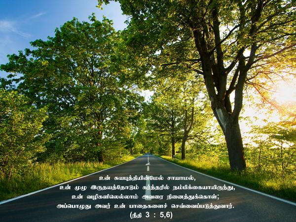 பாதை செவ்வைப்படுத்து –  நீதி 3 : 5,6