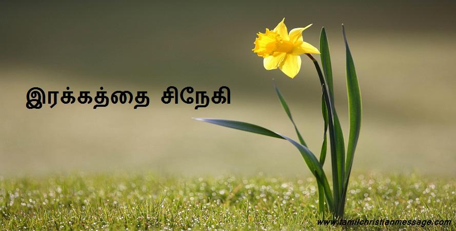 இரக்கத்தை சிநேகி