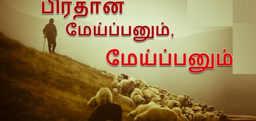 https://s3-ap-southeast-1.amazonaws.com/rbcindia/sermons/Year+of+2017/Sunday+Services/February/05.++The+chief+shepherd%2C+and+shepherd-+Feb+19-+Mor.mp3