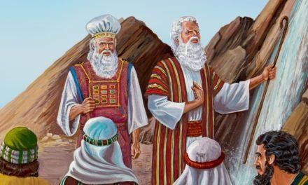 கட்டளையிட்டபடி செய்யுங்கள்