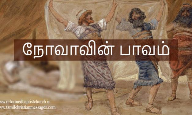 நோவாவின் பாவம்